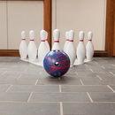 Champion Sports BPSET Bowling Set