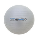 Champion Sports PRX53 53 cm Pro Maxafe Training Exercise Ball
