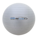 Champion Sports PRX65 65 cm Pro Maxafe Training Exercise Ball