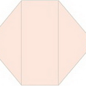 Options Pink Gatefold Invitation- 4 1/4 x 9 1/2 - 10/pk