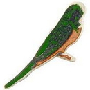 "Eagle Emblems PIN-BIRD, PARAKEET  (1"")"