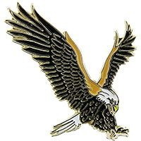 "Eagle Emblems PIN-EAGLE, LANDING  (1"")"