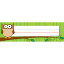 Carson Dellosa CD-122016 Owls Desk Nameplates