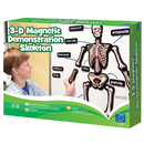 Educational Insights EI-1760 Hands On 3D Magnets Skeletal System