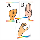 Carson Dellosa IF-23004 Learning Cards Sign Language &