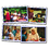 Carson Dellosa KE-845016 Photographic Learning Cards Families