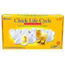 Learning Resources LER2733 Chick Life Cycle Exploration Set