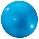 Dick Martin Sports MASGYM24 Exercise Ball 24In Blue