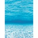 Pacon PAC56528 Fadeless 48X12 Under The Sea 4Rls Per Carton