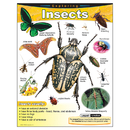 Trend Enterprises T-38184 Chart Exploring Insects Gr 1-5