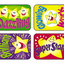 Trend Enterprises T-47113 Applause Stickers Super 100/Pk Stars Acid-Free