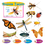 Trend Enterprises T-8605 Discover Insects Mini Bbs