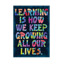 Trend Enterprises T-A67377 Learning Is How We Keep Growing - Poster