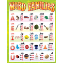 Teacher Created Resources TCR7715 Word Families Chart