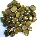 AzureGreen GTEPIB 1 lb Epidote tumbled stones