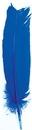 AzureGreen RFBLU Blue feather