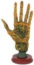 AzureGreen RP916 Alchemy Palmistry Hand
