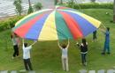Everrich EVC-0070 Parachutes (4 colors) - 12 handles - 12' or 3.5m