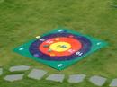 Everrich EVC-0126 Target Toss Game - 5' x 5' Target, 12 pcs Bean Bags