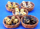 Feng Shui Import Puppies in Bamboo Basket - 287
