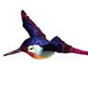 Clark Collection CC1406001 Hummingbird Window Magnet