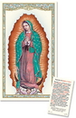 Christian Brands PC911 Our Lady of Guadalupe Laminated Holy Card