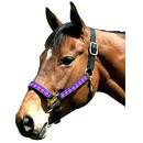 Intrepid International Leather Crown Diamond Pattern Halter