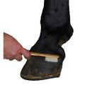 Intrepid International Blister Brush