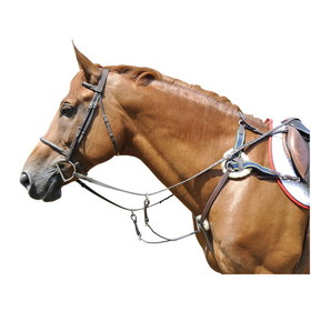 Exselle AEBP149 Five Point Breastplate