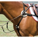 Exselle Five Point Breastplate