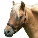 Intrepid International Miniature Horse Leather Halter - Lg