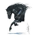 Haddington Green Equestrian Art HG389 Print Onyx 2 Matted (Print Size 7 3/4