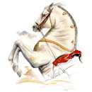 Haddington Green Equestrian Art Jan Kunster Horse Prints - Ayamonte (Lipizzan)