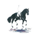 Haddington Green Equestrian Art Jan Kunster Horse Prints - Baccara (Dressage)