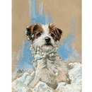 Haddington Green Equestrian Art HGC474X Card Xmas Snow Beard (Jack Russell)