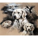 Sally Mitchell Fine Art Dog Prints - When I Grow Up