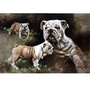 Sally Mitchell Fine Art Dog Prints - Born to Rule