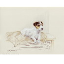 Corinium Fine Art Dog Prints - Terrier on Jacket