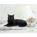 Corinium Fine Art Cat Prints - Black Cat on Window Sill