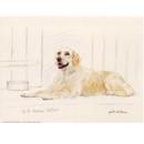 Corinium Fine Art Dog Prints - Golden Retriever