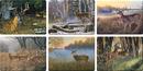 IWGAC 017-786 Deer Scene Cutting Boards Assorted Priced Each