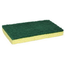 74 ETC Sponge with Green Backing Pad