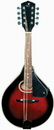 J Reynolds - J Reynolds Mandolin- Wine Red