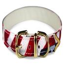 Buckle Collar