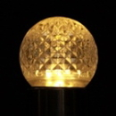 LEDgen G40-RETRO-WW - G40 Non-dimmable Warm White Commercial Retrofit bulb with an E26 base and 10 Internal LED Chips