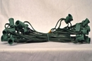 LEDgen WL-C7G-12-25 - Cordset, C7, Socketed cord set, E12 sockets, Green wire, 25 Ft 12
