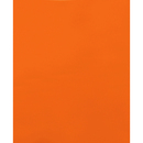 LION 91100 2-Pocket Plastic Folder, Letter - 1 Each