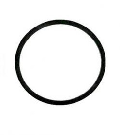 Binks 83-1419 Gasket, Price/EACH