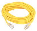 Coleman Cable Systems 100 10Ga P/S Ext Cord W/Power Indicator