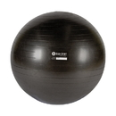 Body sport BDSBULK55ABCMBLK Body Sport(R) Studio Series Fitness Ball (Exercise Ball), 55 Cm, Charcoal, Slow Air Release, Bulk Packaged